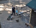 Зоопарк Радуга в Зеленогорске