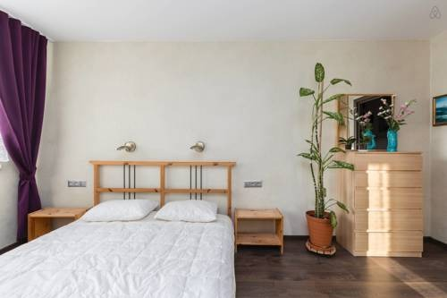 Apartment Pionerskaya