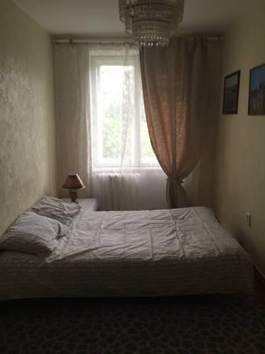 Apartment on Zanevsky