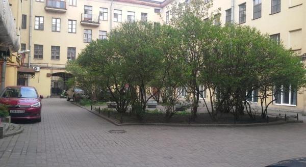 Laweran Nevsky 96