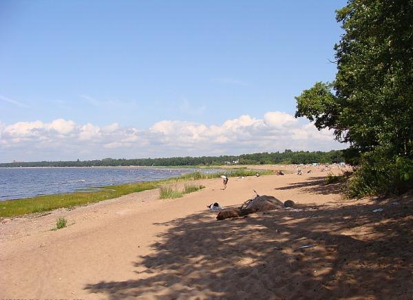 Сестрорецкий пляж
