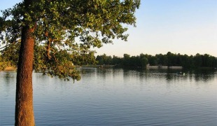 Где в Питере этим летом отдохнуть у воды?