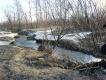 Парк «Сосновая Поляна»