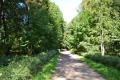 Летний сад (Кронштадт)