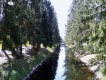 Рыбный (Поперечный) канал